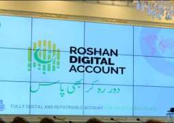 Overseas Pakistanis invest $1. 25b in Roshan Digital Accounts