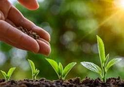 PM's green initiatives bring laurels for Pakistan
