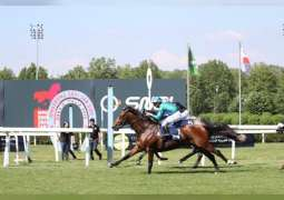 UAE President's Cup World Series for Purebred Arabian Horses arrives in Italy