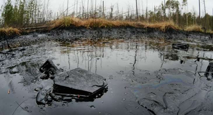 Cleanup of Oil Spill on Northern Sakhalin Shore to Take 3 Days - Authorities