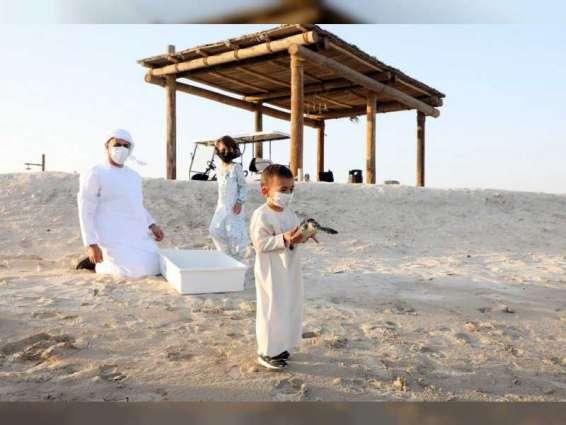 بمشاركة ذياب بن محمد بن زايد آل نهيان...هيئة البيئة - أبوظبي تطلق 150 سلحفاة بحرية إلى موائلها بعد إعادة تأهيلها
