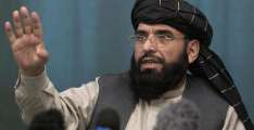 Taliban Say Discussed Peace Process in Afghanistan With EU Special Representative