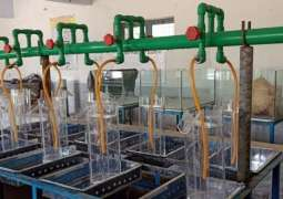 Successful induced breeding of Pangasius fish by UVAS