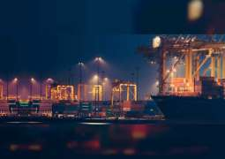 Arbitration tribunal rejects Djibouti Port Company's bid to escape contract with DP World