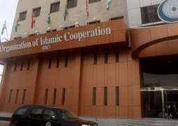 OIC Commiserates With Iraq over Victims of Dhi Qar Fire Outbreak