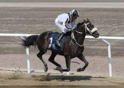 'Rasmi Al Khalidiyah' wins UAE President's Cup World Series for Purebred Arabian Horses in Sweden