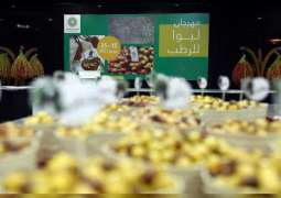 17th Liwa Date Festival concludes today