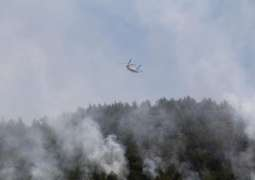 Wildfires in Southern Turkey Injure Over 180 People - Forestry Minister
