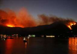US Has Not Received Request From Turkey to Assist in Fighting Wildfires - FEMA