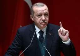 Turkey Arrests Suspect in Starting Forest Fires in Country - Erdogan