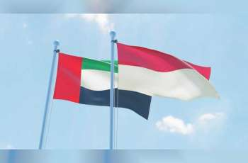 UAE sends plane carrying 56 tonnes of medical supplies to Indonesia