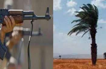 شاب عراقي یقتل عدد من أفراد عائلتہ بسبب نخلة غیر مثمرة