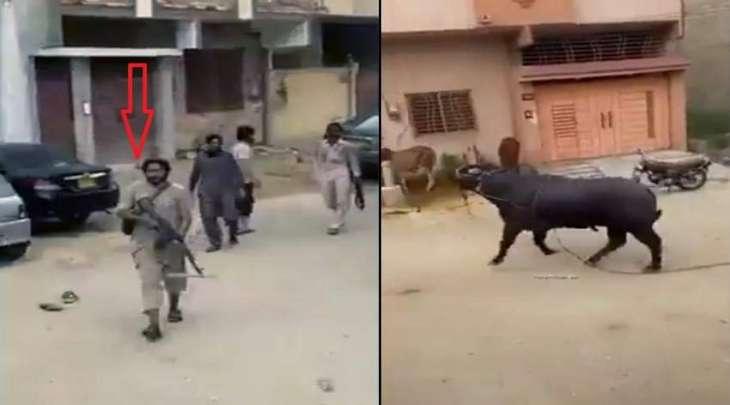 شاھدفیدیو : اطلاق النار علی عجل ھرب قبل ذبحہ فی مدینة کراتشي