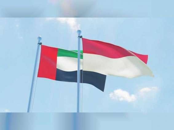 الإمارات ترسل طائرة على متنها 56 طنا من المواد والمستلزمات الطبية إلى إندونيسيا
