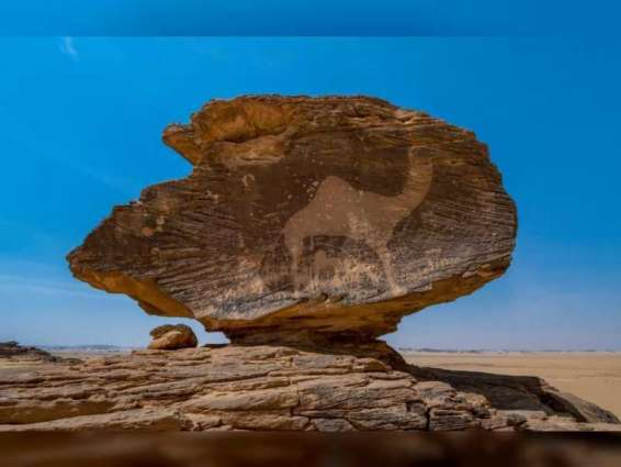 Five new sites in Arab, Europe regions inscribed on UNESCO's World Heritage List