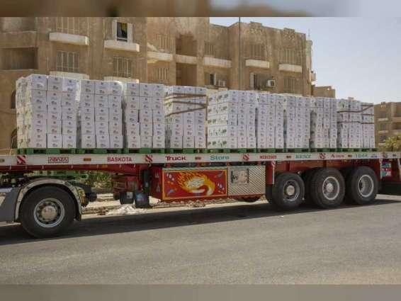 '100 Million Meals' campaign distributes 30 million meals in Egypt