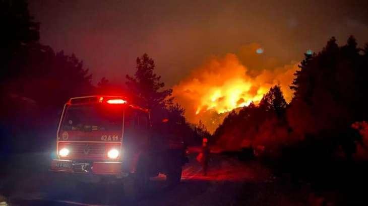 Erdogan's Spokesman Calls Wildfires in Turkey National Disaster