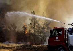 Turkish Power Station Damaged by Fires to Resume Work Soon - Energy Minister