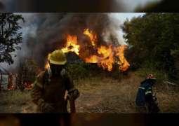 اليونان تكافح لإخماد النيران المستعرة في الغابات