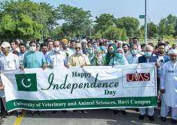 UVAS celebrates Independence Day of Pakistan in all campuses with zeal and zest