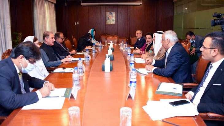 Qureshi calls on Arab Parliament's delegation