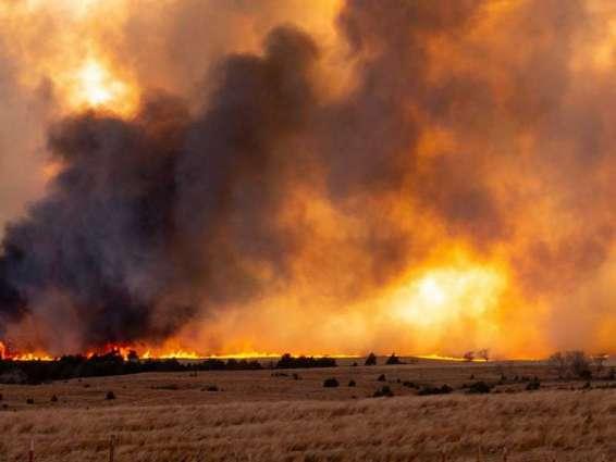 حرائق الغابات تلتهم 4 ملايين هكتار في الشرق الأقصى الروسي