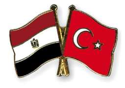Turkey, Egypt Discuss Normalizing Relations During 2nd Round of Consultations - Ankara