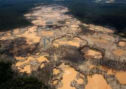 Record 227 Environmentalists, Land Defenders Murdered Worldwide in 2020 - Report