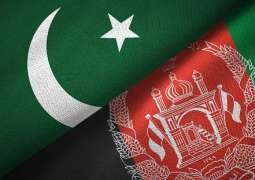 Taliban Say Acting Foreign Minister of Afghanistan Met With Pakistani Ambassador