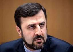 West Should Not Expect More Forbearance From Tehran Until Sanctions Lifted - Iran's Envoy