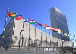UK Foreign Minister to Discuss World Peace, Afghanistan With UN Security Council Members