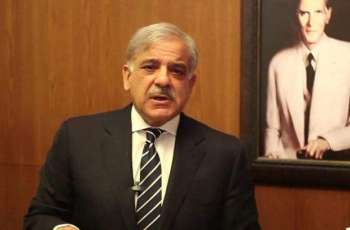 PML-N will win next general elections: Shehbaz Sharif