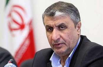 Iran's Vice President to Discuss Nuclear Cooperation With Russia's Rosatom Chief - Embassy
