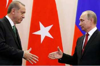 Putin, Erdogan to Discuss Syria, Afghanistan, Libya in Sochi on Wednesday - Kremlin