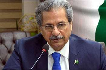 Local govt elections will be held in March next year, Shafqat Mahmood