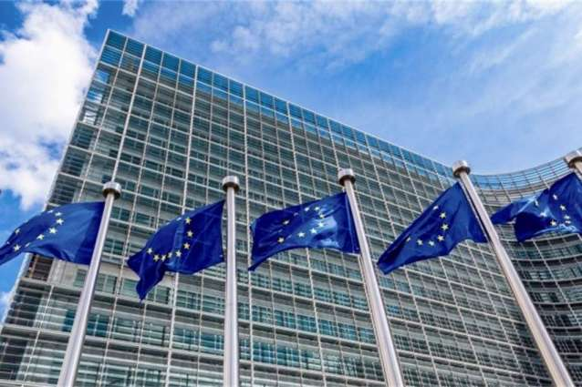 EU Allocates $140Mln to Support Democracy, Human Rights Worldwide Through 2021