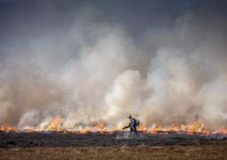 Greenpeace UK Warns of Fires Deliberately Lit on England's Carbon-Rich Peatlands