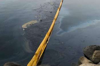 Southern California Oil Leak 'Extremely Disruptive' to Local Businesses - Testimony