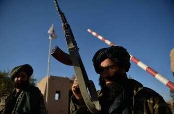 Taliban Not Seeking Russia's Military Assistance - Russian Ambassador