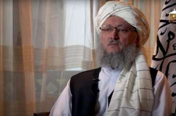 Taliban Do Not Need Foreign Military Assistance - Deputy Prime Minister