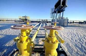 German Envoy Negotiating Russian Gas Transit Through Ukraine After 2024 - Spokesperson